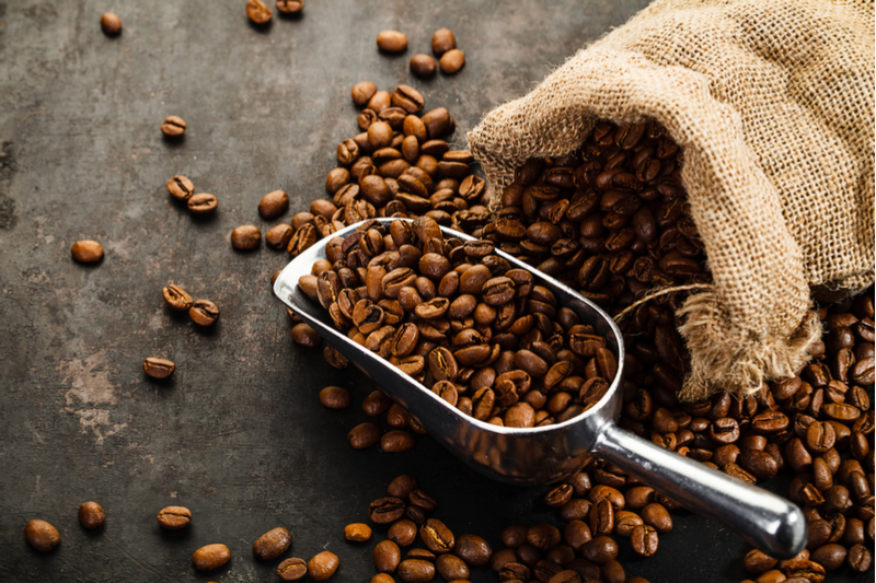 The Best Coffee Beans in The World